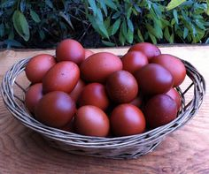 Info about French Black Copper Maran chickens; beautiful birds with *very* dark brown eggs – said to be very rich and creamy in flavor.