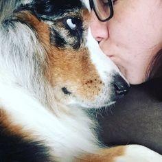 My life is so complete. #ellietheaussie #dog #aussiesofinstagram #personal