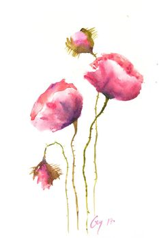 Red blossom poppy flowers Original watercolor painting on