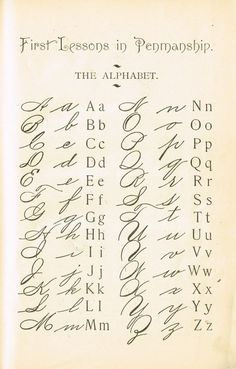 1895 School Primer Penmanship Page with cursive alphabet Alphabet Cursif, Cursive Fonts Alphabet, Handwriting Worksheets, Letters In Cursive, Beautiful Handwriting Alphabet, Writing Cursive, Alphabet School, Fancy Handwriting, Tattoo Alphabet
