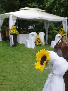 Na początek lata ślub cały w słonecznikach