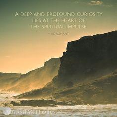 A deep and profound curiosity lies at the heart of the spiritual impulse.  ~ Adyashanti