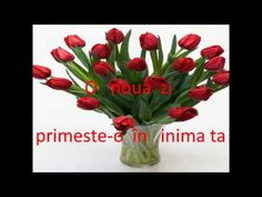 Your Choice of the number of Tulips in a bouquet decorated with a lovely ribbon and colorful papers. Free gift message on card Vase is not included Please select the number of the flower in bouquet. More Flowers comes with more decoration Tulpen Arrangements, Valentine's Day Flower Arrangements, Yellow Tulips, Tulips Flowers, Beautiful Flowers, Send Flowers, Flowers Today, Flowers Nature, Spring Flowers