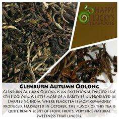 Glenburn Autumn Oolong