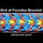 Rainbow Loom® Bird of Paradise Armband
