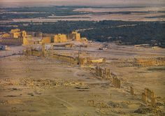 Panorama of The Ancient Roman city of Palmyra, Syria. UNESCO World Heritage . Ancient Ruins, Ancient Rome, Ancient History, Palmyra Syria, Temple, Roman City, Archaeological Site, Ancient Civilizations, Roman Empire