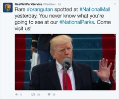 Accounts across the department were temporarily frozen, and the offending tweets were deleted. The flagged tweets were retweets about the Trump inauguration's moves on climate and crowd size.