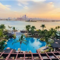 The gorgeous Sofitel Hotel & Resort on the Palm Jumeirah, Dubai. Sofitel Hotel, Palm Jumeirah, Luxury Pools, Thatched Roof, Pool Bar, Concrete Jungle, Hotels And Resorts, Gazebo, Dubai