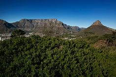 One can spend quality time together exploring our well known Mother City, Cape Town, and still creating lasting memories. Cape Town, Explore, Mountains, Luxury, City, Travel, Viajes, Cities, Destinations