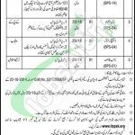Tap this page for Ministry of Narcotics Control Jobs 2017 Govt. Of Pakistan Latest Vacancies. Applications are invited from the Ministry of Narcotics Control Jobs In Pakistan, Ministry, Positivity, Casual, Women, Optimism, Woman