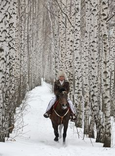 Horse Riding in the fresh snowfall at Grail Springs in beautiful Bancroft, Ontario, Canada - once close to home