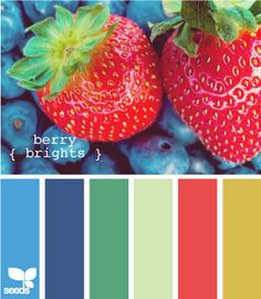 color inspiration - berry brights: design seeds