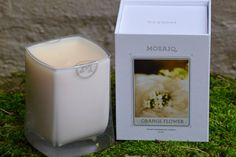 MOSAIQ CANDLE - ORANGE FLOWER 8OZ  The essence of spring is difficult to describe, but certainly felt by all. As cold days give way to the suns warming light, a tangible excitement can be felt. This splendid fragrance combines sweet orange blossoms still dusted with pollen and the green leaves of the tree, evoking a scent that is both fresh and new. FRAGRANCE NOTES | Orange blossom, tangerine, clementine leaves, water lily.