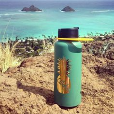 Hydro flask stickers custom decals for your hydroflask pineapple stickers custom name sticker personalized sticker Handmade in Kailua Hawaii (12.00 USD) by 3rdAveShore