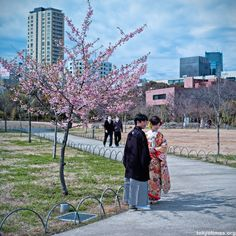 A traditional Japanese spring wedding
