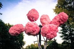 cotton candy trees - Google Search
