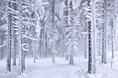 Frozen by Kilian Schönberger on 500px