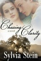 Chasing Clarity, an ebook by Sylvia Stein at Smashwords