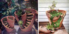 Una nuova tendenza nel giardinaggio vede i giardinieri creare incantevoli giardini fatati con l'utilizzo di vasi rotti, dimostrando che anche un vaso rotto può essere utile e bello.