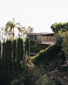 Set high in Crestwood Hills, Richard Neutra's 1956 Adler House underwent a faithful restoration by Tyler and Margaret Lemkin. Using archival photos by Julius Shulman as a guide, they set out to refresh as many original details as possible.
