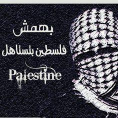 #بهمش  فلسطين بتستاهل  #palestine ❤✌✌✌