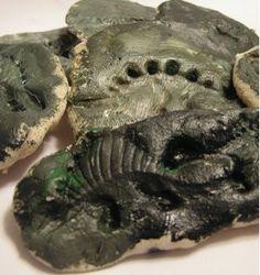 Salt Dough Dinosaur Fossils | AllFreeKidsCrafts.com