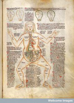 Image result for medieval manuscript medicine women