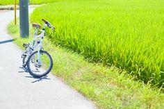 Copyright © monograph 様 / DASH P8(2013) / DAHONならではの軽い走りで、暑い季節、近場をちょこっと巡るだけでも爽快! 強い日差しや湿度もありつつ、緑がだんだん濃くなっていく夏、その中を走るのがいちばん好きです。
