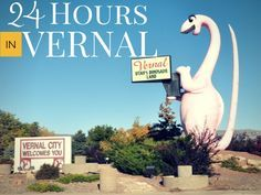 Do you have just 24 hours to stop in Vernal, Utah? Here are all the fun things you can do in that time. Via @scasesandscups #Utah