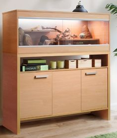 Smart dual purpose Wooden Vivarium and Cabinet £359.00 . I don't have a lizard and I don't plan on getting a lizard, But that is so awesome maybe it can be converted in a rat cage or something