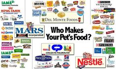 How Grocery Store Pet Foods Are Killing Our Pets | Rodney Habib