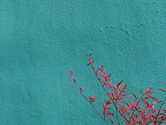 turquoise canvas - maybe something like this for my bedroom???