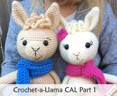 Join us for a fun CAL making these sweet Llamas (or alpacas!) Filled with step by step instructions and photos along the way, this will be a fun event! The link below will take you to Part 1 to get started! Thread Crochet, Crochet Yarn, Crochet Flowers, Crochet Toys, Free Crochet, Crochet Gifts, Half Double Crochet, Single Crochet, Unique Crochet