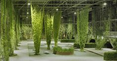 A map of the best contemporary landscape architecture projects from around the world. Green Architecture, Sustainable Architecture, Landscape Architecture, Landscape Design, Architecture Design, Garden Design, Conception Scénique, Stage Set, Urban Renewal