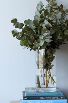 En sart nøytral farge som passer godt med naturlig treverk. #nøytral#grå#grey#eucalyptus#kvister#grønt#kapplinnè#maling#farge#painting#inspirasjon#inspiration#fargekart#stue#livingroom#gang#hall#Fargerike Ikea, Plants, Nature, Ikea Co, Planters, Plant, Planting