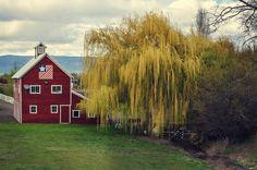 Thorp Hwy Barn