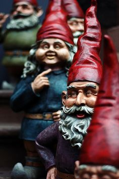 Google Image Result for http://www.sciencebuzz.org/sites/default/files/images/gnomes.jpg