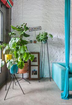 Parede de tijolinho pintado de branco, muitas plantas e sofá azul.