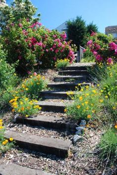 Whimsical Garden Paths & Walkway Ideas - Simple and Affordable Wooden Garden Path Ideas 3 …of stepping stones of dirt or of grass. Sloped Backyard, Sloped Garden, Backyard Ideas, Terrace Ideas, Rustic Backyard, Big Backyard, Backyard Designs, Modern Backyard, Pergola Ideas