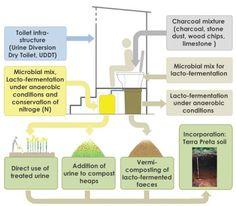 TPS system integrates sanitation, biowaste management and agriculture