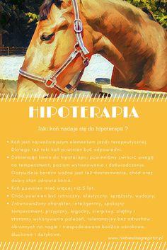 Niebieski Segregator - Hipoterapia część 3 Horses, Animals, Therapy, Animales, Animaux, Animais, Horse, Words, Animal