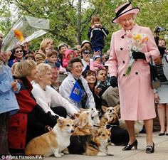 HRM Queen Elizabeth on a visit to adoring Corgis (and their people) in Canada. Is it me or is that a little girl giggle on her face? Yup, THOUGHT SO! If you liked this post, check out these!Weekend Celebrity Corgi: DookieThe Royal CorgisPixelOne last Easter hurrah …