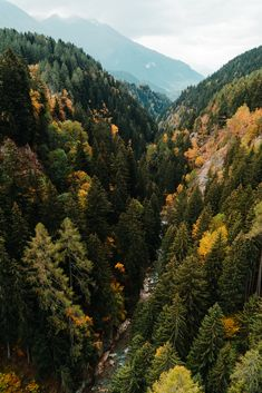Autumn is slowly coming in Switzerland with the beautiful tones it's known for! Places Ive Been, Landscapes, Around The Worlds, October, River, Autumn, Adventure, Instagram, Nature