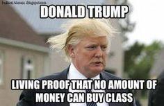 Funniest Donald Trump Memes: Donald Trump: No Class
