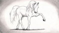 dibujos-de-caballos-para-dibujar-a-lapiz.jpg (630×354)