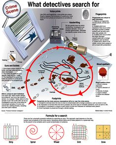 What is forensic science _ was ist forensik? _ qu'est-ce que la science médico-légale _ ¿qué es la ciencia forense? _ what is forensic science, forensic science classroom decor Book Writing Tips, Writing Help, Writing Prompts, Forensic Psychology, Forensic Science Career, Science Chemistry, Science Facts, Organic Chemistry, Life Science