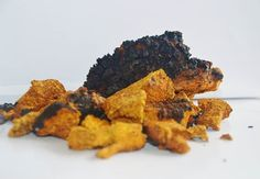 Chaga Fact of the day: Did you know Betulinic Acid, a constituent of Chaga, triggers apoptosis through a direct effect on the mitochondria of cancer cells!