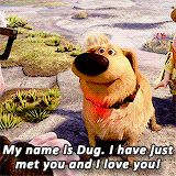 i just met you and i love you