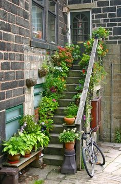 potted plants on exterior stairs Cottage Garden Plants, Garden Spaces, Home And Garden, Container Plants, Container Gardening, Garden Steps, Garden Path, Front Steps, Dream Garden
