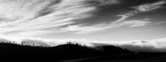 California Hillside - Fog atop hills